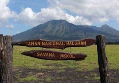 TAMAN NASIONAL BALURAN DISERBU WISATAWAN